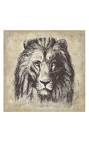 【WALL ART】 ALFONZ / 4/8 SAVANE ALF00566DC (Lion)
