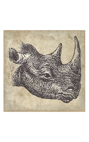 【WALL ART】 ALFONZ / 3/8 SAVANE ALF00566DC (Rhinoceros)