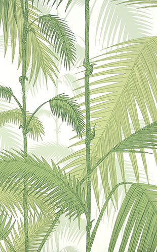 Cole&Son / CONTEMPORARY RESTYLED Palm Jungle/ 95/1001