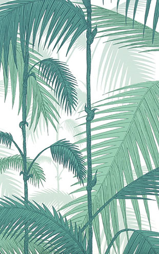 Cole&Son / CONTEMPORARY RESTYLED Palm Jungle/ 95/1002