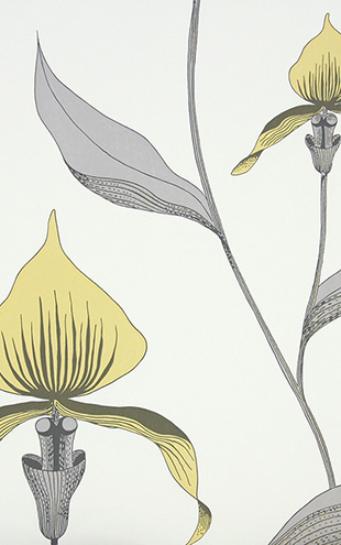 Cole&Son / CONTEMPORARY RESTYLED Orchid/ 95/10057