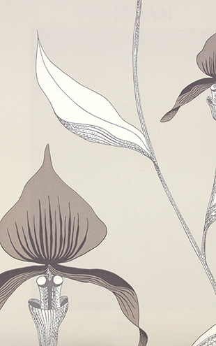 Cole&Son / CONTEMPORARY RESTYLED Orchid/ 95/10058