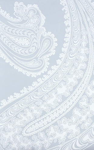 Cole&Son / CONTEMPORARY RESTYLED Rajapur/ 95/2013