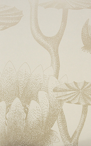 Cole&Son / CONTEMPORARY RESTYLED Lily/ 95/4019