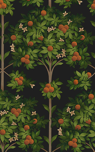 Cole&Son / SEVILLE ORANGE BLOSSOM 117/1003(MANOR HOUSE)