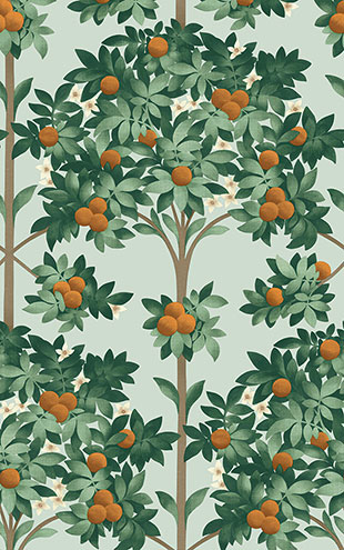 Cole&Son / SEVILLE ORANGE BLOSSOM 117/1004(MANOR HOUSE)