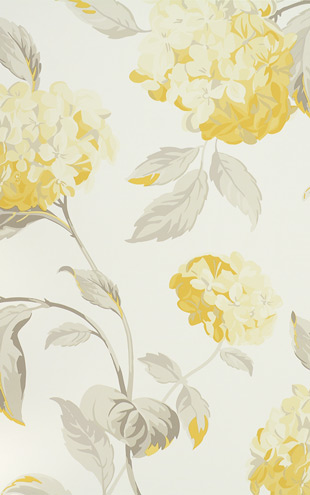 Laura Ashley / Hydrangea Camomile LA17007
