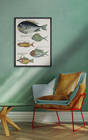 Mind the Gap WALL ART / Poissons Ecrevis VII  FA12502