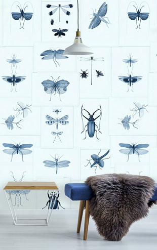 Mind the Gap / Entomology Blue WP20235