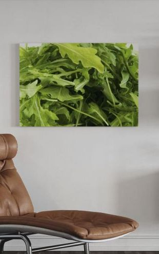 【Canvas Print】PHOTOWALL / Fresh Ruccola (e19124)