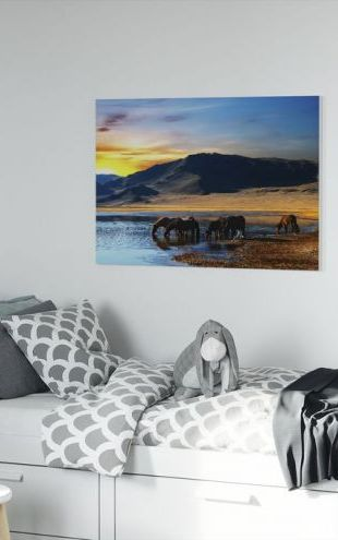 【Canvas Print】PHOTOWALL / Drinking Horses (e19152)