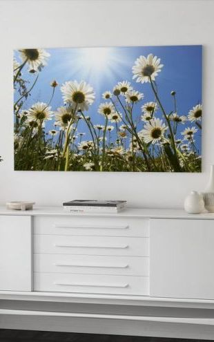 【Canvas Print】PHOTOWALL / White Daisies (e19159)
