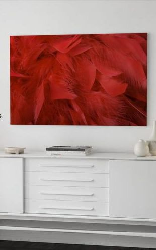 【Canvas Print】PHOTOWALL / Red Feathers (e19178)