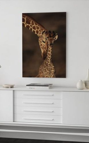 【Canvas Print】PHOTOWALL / Giraffes (e6345)
