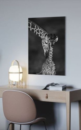 【Canvas Print】PHOTOWALL / Giraffes - b/w (e6346)