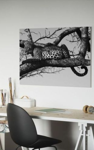 【Canvas Print】PHOTOWALL / Leopard in Tree (e10005)