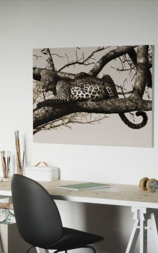 【Canvas Print】PHOTOWALL / Leopard in Tree (e10006)