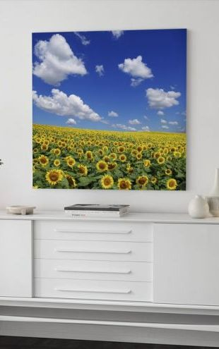 【Canvas Print】PHOTOWALL / Sunflower Field (e19334)