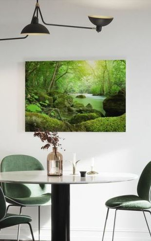 【Canvas Print】PHOTOWALL / River in the Forest (e21350)