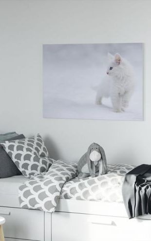 【Canvas Print】PHOTOWALL / White as Snow (e22466)