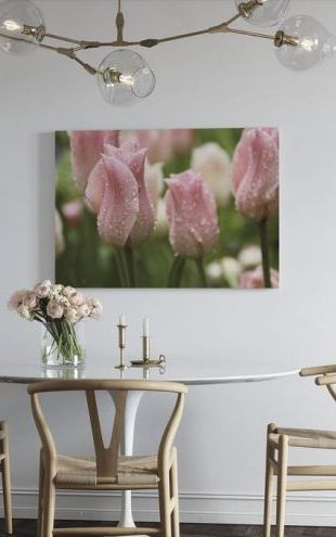 【Canvas Print】PHOTOWALL / Tulips After Rain (e23403)