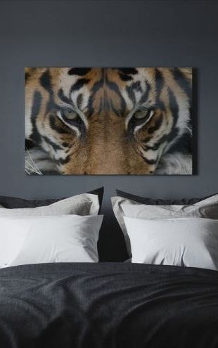 【Canvas Print】PHOTOWALL / Eye of the Tiger (e23635)