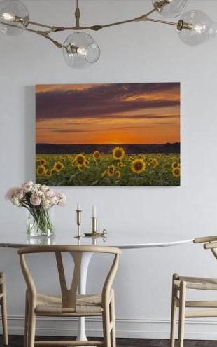 【Canvas Print】PHOTOWALL / Sunset over Sunflowers (e24310)