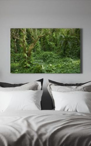 【Canvas Print】PHOTOWALL / Ancient Ruins Covered by Tropical Jungle (e24683)