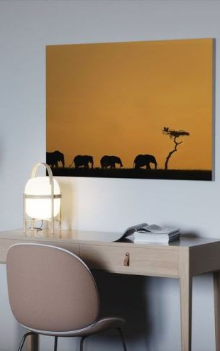 【Canvas Print】PHOTOWALL / Herd of Elephants and Vultures at Sunrise (e24646)