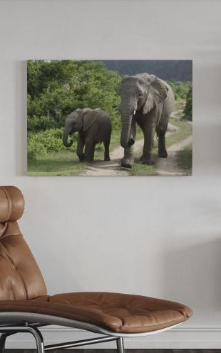 【Canvas Print】PHOTOWALL / Elephant Baby and Mother_ (e29606)