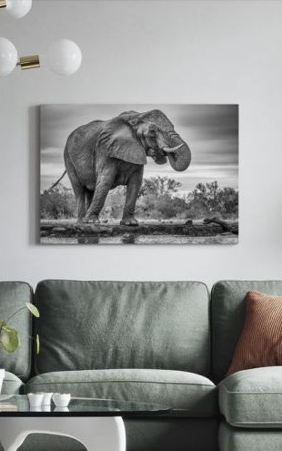 【Canvas Print】PHOTOWALL / Standing Proud (e29631)