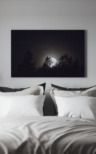 【Canvas Print】PHOTOWALL / Moonlight over Medelpad, Sweden, Europe (e40465)