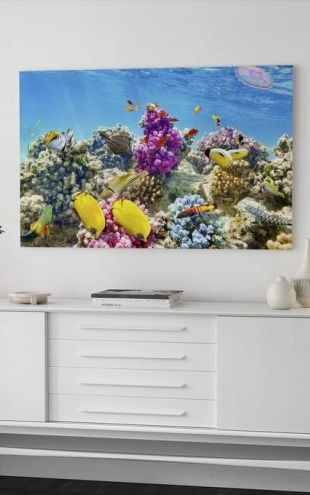 【Canvas Print】PHOTOWALL / Under the Sea (e40962)