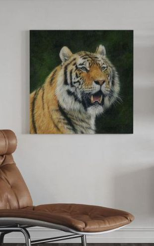 【Canvas Print】PHOTOWALL / Mature Amur Tiger (e312452)