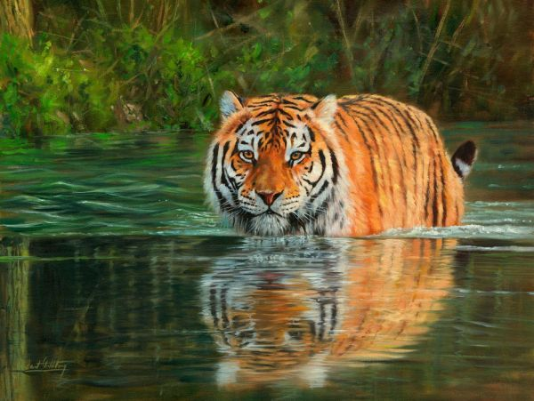 【Canvas Print】PHOTOWALL / Tiger in Water (e312456)