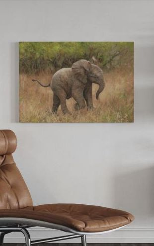 【Canvas Print】PHOTOWALL / Baby African Elephant (e312461)