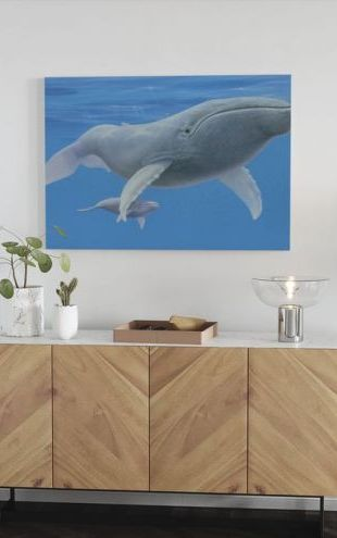 【Canvas Print】PHOTOWALL / Whale Baby (e312612)