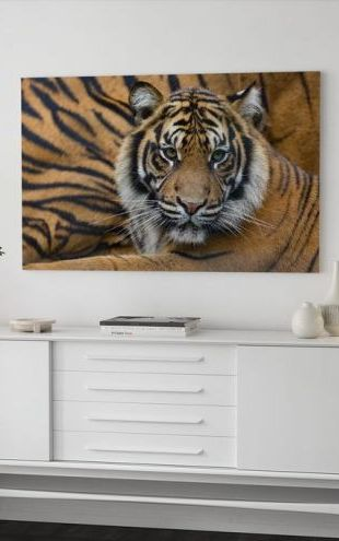 【Canvas Print】PHOTOWALL / Sumatran Tiger (e314501)