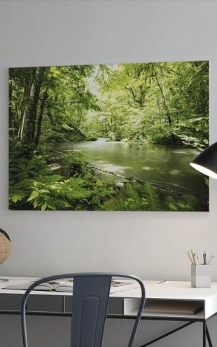 【Canvas Print】PHOTOWALL / Deep into the Forest (e316102)
