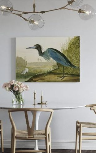 【Canvas Print】PHOTOWALL / Little Blue Heron - John James Audubon (e318887)