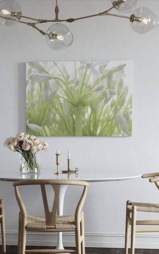 【Canvas Print】PHOTOWALL / African Lily (e321144)