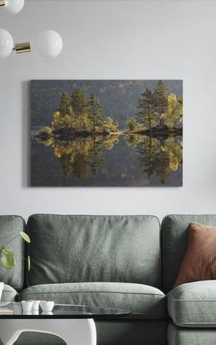 【Canvas Print】PHOTOWALL / Reflections of Trees (e320138)