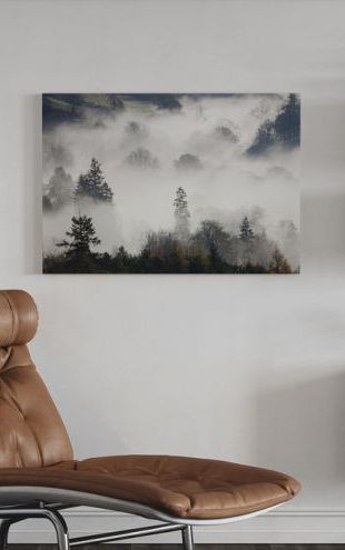 【Canvas Print】PHOTOWALL / Woodland Mist (e320144)