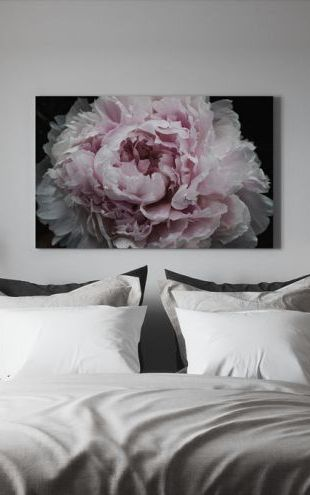 【Canvas Print】PHOTOWALL / Pink Peony Passion (e320484)