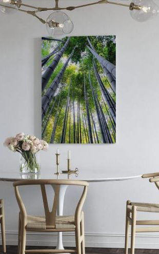 【Canvas Print】PHOTOWALL / Japan Rising Sun - Bamboo Forest Kyoto II (e328659)