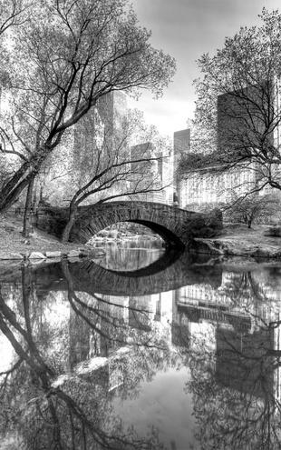 PHOTOWALL / Bridge in Central Park - b/w (e1593)