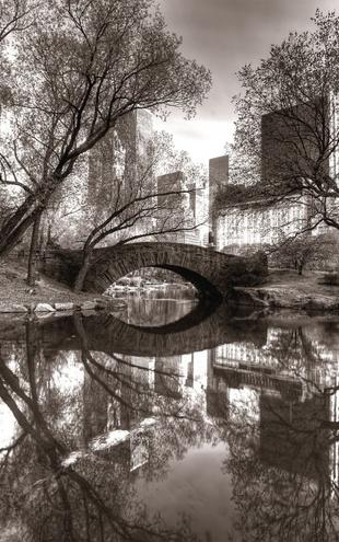 PHOTOWALL / Bridge in Central Park - Sepia (e1594)