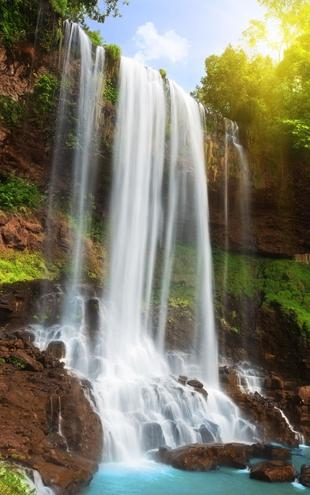 PHOTOWALL / Waterfall in Rain Forest (e19136)