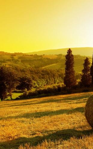 PHOTOWALL / Sunset Tuscany Landscape (e19154)