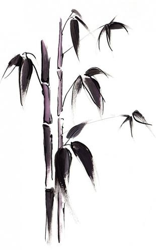 PHOTOWALL / Bamboo Illustration (e6253)